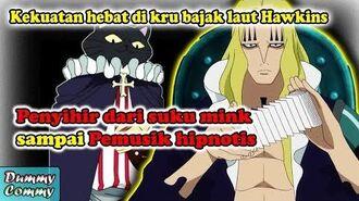 TAK PERNAH DI BAHAS !! Rahasia kekuatan dari para kru bajak laut basil hawkins (ONE PIECE THEORY)