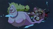 Dugong Kokoro rettet die Mugiwara-Piraten