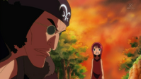 Robin se encuentra con kuzan