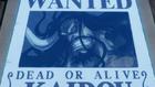 Kaido Wanted Poster