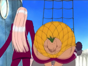 Ori Ori no Mi Anime Infobox