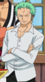 Zoro's Post-Dressrosa Outfit