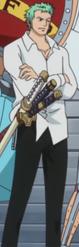 Zoro's Post-Dressrosa Outfit