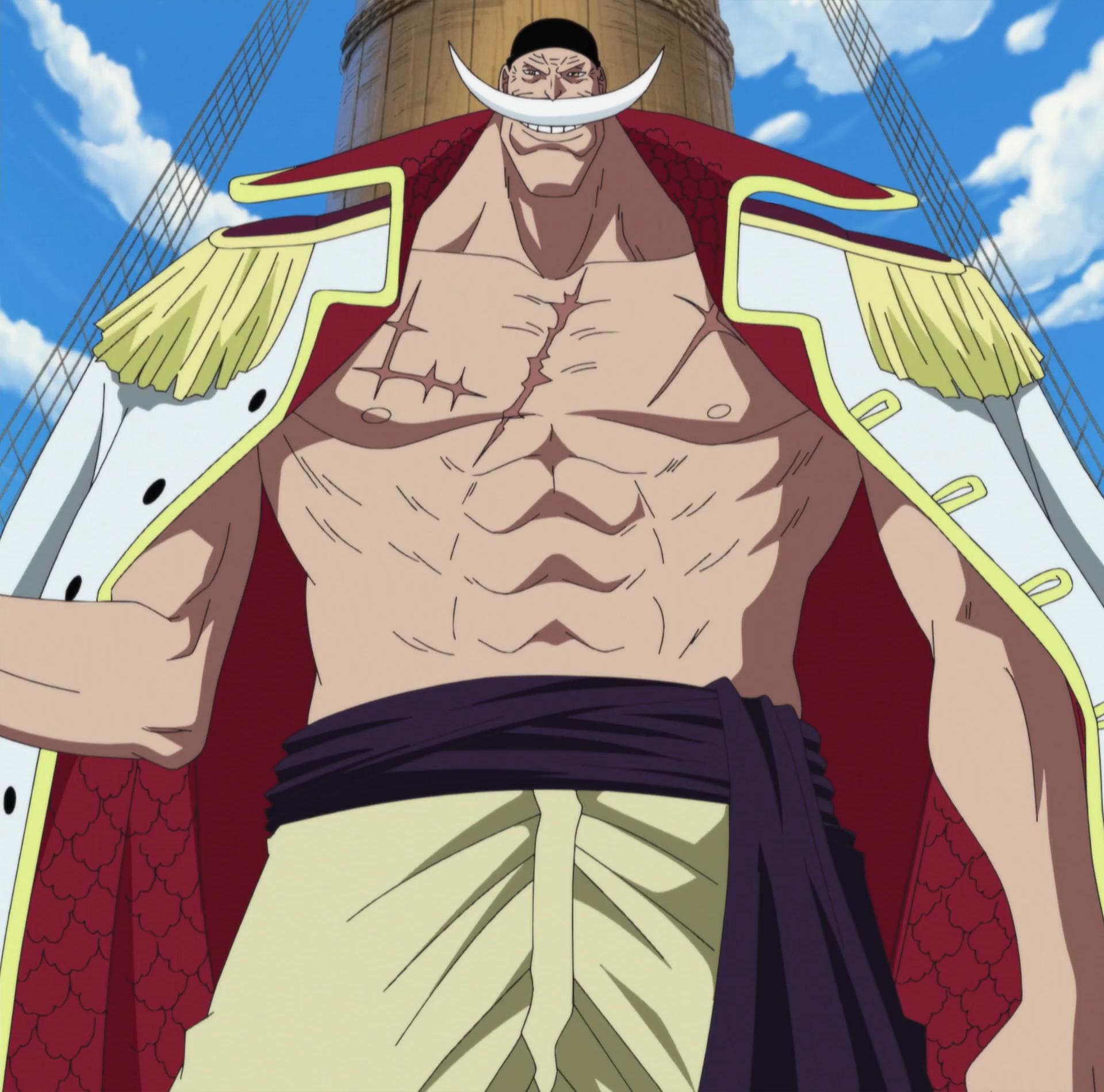 Edward Newgate | One Piece Wiki | FANDOM powered by Wikia