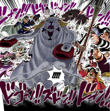Whitebeard vs Blackbeard Pirates