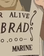 Bobrad's Wanted Poster