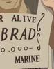 Bobrad's Wanted Poster