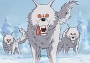 Esquadrão de Lobos