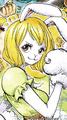 Carrot Colorée dans le Manga