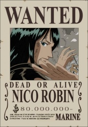 Wanted de Robin
