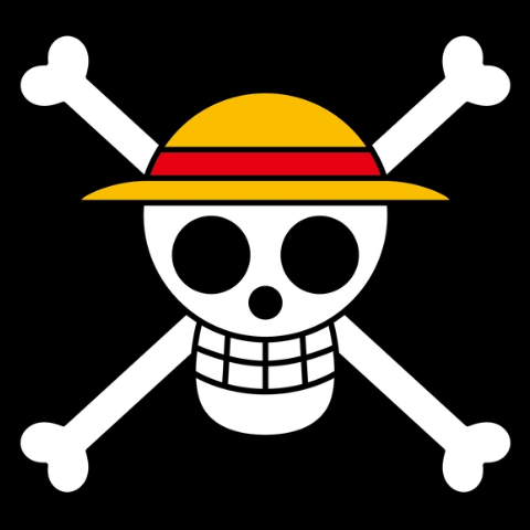 File:Straw Hat Pirates Portrait.png