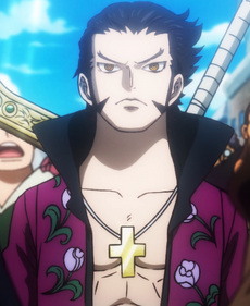 Dracule Mihawk at Age 19