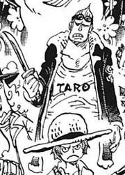 Taro Deuxième Tenue