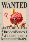BroookBones Wanted Poster
