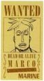 Marco Avis de Recherche