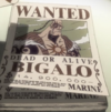 Bigalo's Wanted Poster