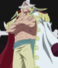 Middle Age Whitebeard Full Body View