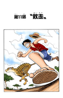 Chapter 11 Colored