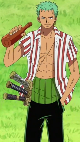 Roronoa Zoro Anime Debut Infobox