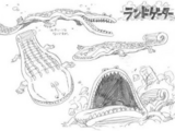 Animal Species/Strong World
