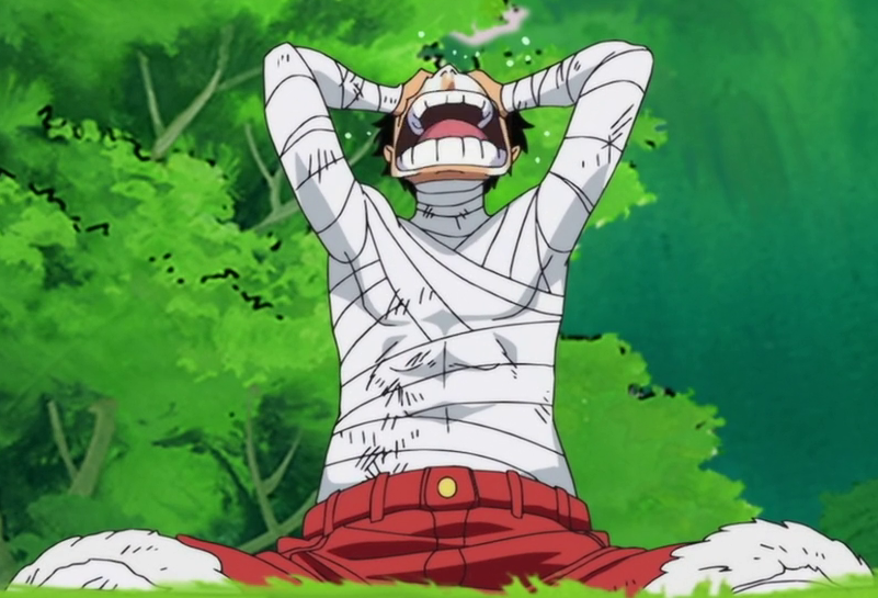 Post War Arc One Piece Wiki Fandom