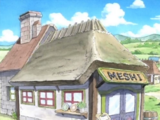 Meshi
