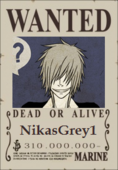 NikasGrey1 Wanted Poster 2