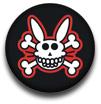 Punk hare