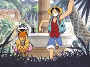 Luffy, Vivi und Karuh gehen auf Erkundungstour