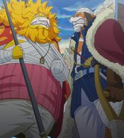 Inuarashi et Nekomamushi face-à-face