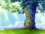 Árbol del Tesoro Adam