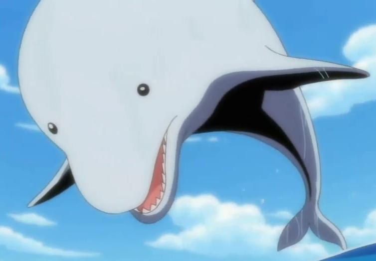Giant Dolphin