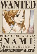 Actual cartel de Nami