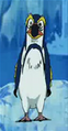 Domo Pingouin