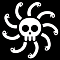 Kuja Pirates Portrait