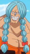 Franky Braided Hair
