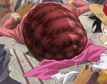 Kame Kame no Mi Forme Hybride Anime Infobox
