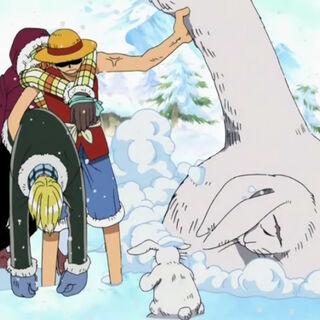 Luffy rettet einen Lapin.