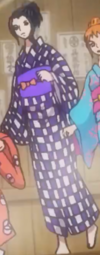 Robin's Second Wano Country Arc Outfit