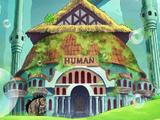 Casa d'aste di umani