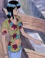 Robin en la Isla Cabra
