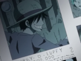 Monkey D. Luffy/Hubungan