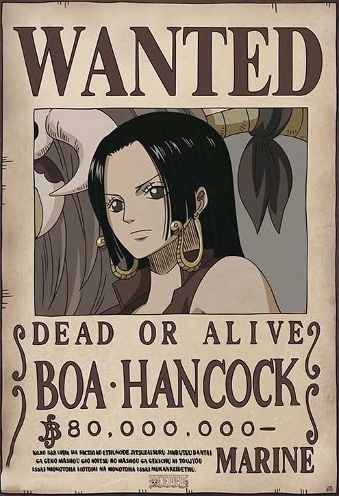 Boa Hancock Avis de Recherche