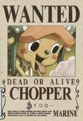 Actual cartel de Chopper