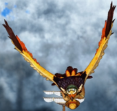 Ptak-Ptakowoc, Model Orli