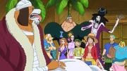 Inuarashi avec Wanda et les Mugiwara