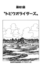 Chapter 491