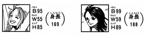 SBS 37 Robin-Nami-Medidas