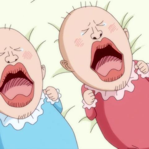 Chiffon e Laura neonate