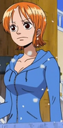 Nami's First Ice Hunter Arc Outfit